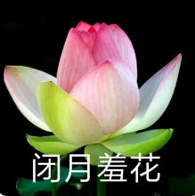 青海东大肛肠医院:你是为什么害怕生孩子呢?